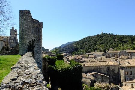 Croisière De la Bourgogne à la Camargue : sur la Saône et le Rhône (formule port/port) - 6