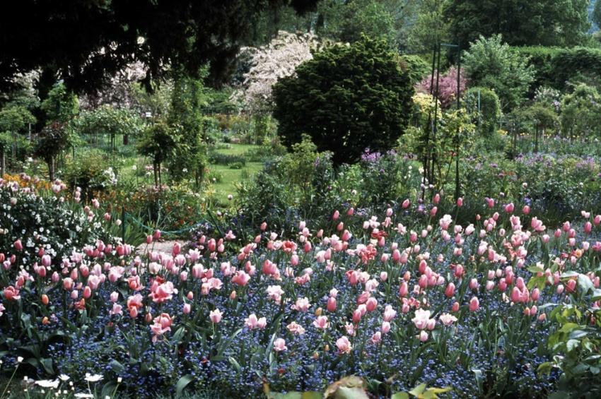 Visite guid e de la fondation claude monet et de ses for Visite de jardins en france