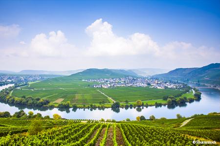 Croisière 3 fleuves : le Rhin, la Moselle et le Main (formule port/port) - 9