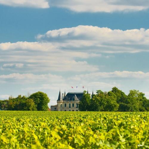 Château Margaux, Médoc