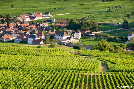 Get away from it all on an Emotional Journey from Saône-et-Loire to the Côte d'Or