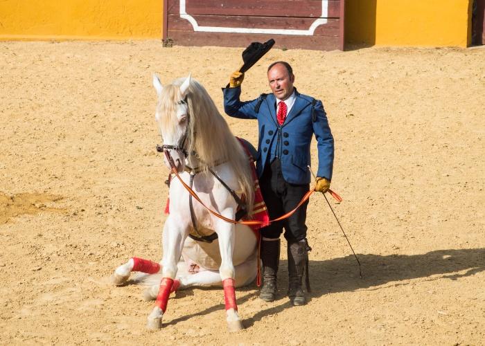 Les paysages enchanteurs et villes culturelles d'Andalousie et de l'Algarve - 18