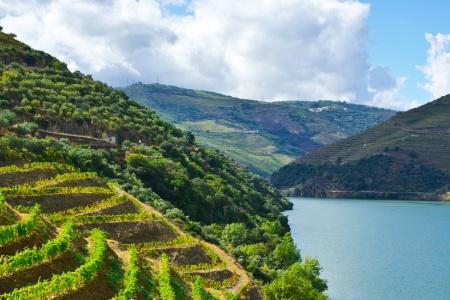 Croisière Le Douro, l'âme portugaise - 6