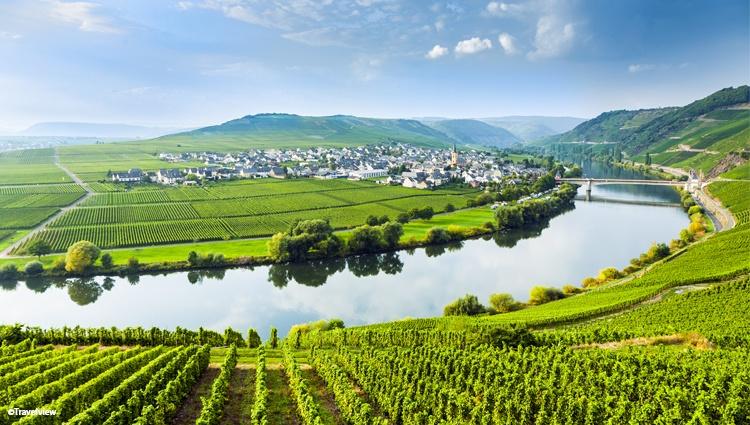 La Moselle, fleuve pittoresque