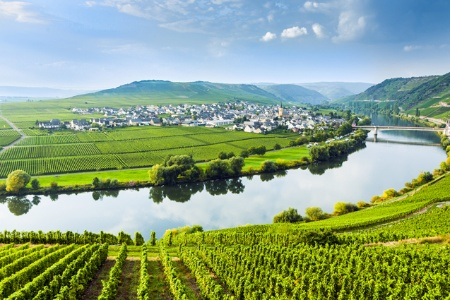 An Exceptional Cruise Through the Fairytale-like, landscapes on the Moselle and the Romantic Rhine (port-to-port cruise)