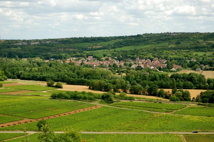 Vignoble de Santenay