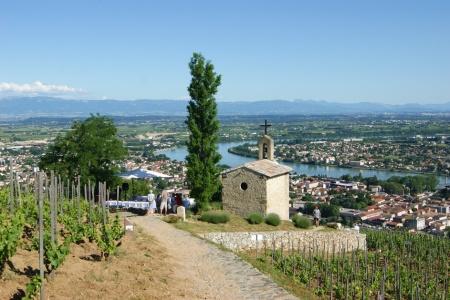 Croisière oenologique, le monde fabuleux de la vigne et du vin (formule port/port) - 1