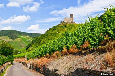 Croisière La magie de la Moselle et la vallée du Rhin romantique - 1