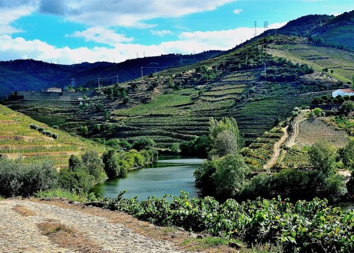 Croisière Le Douro, l'âme portugaise - 17