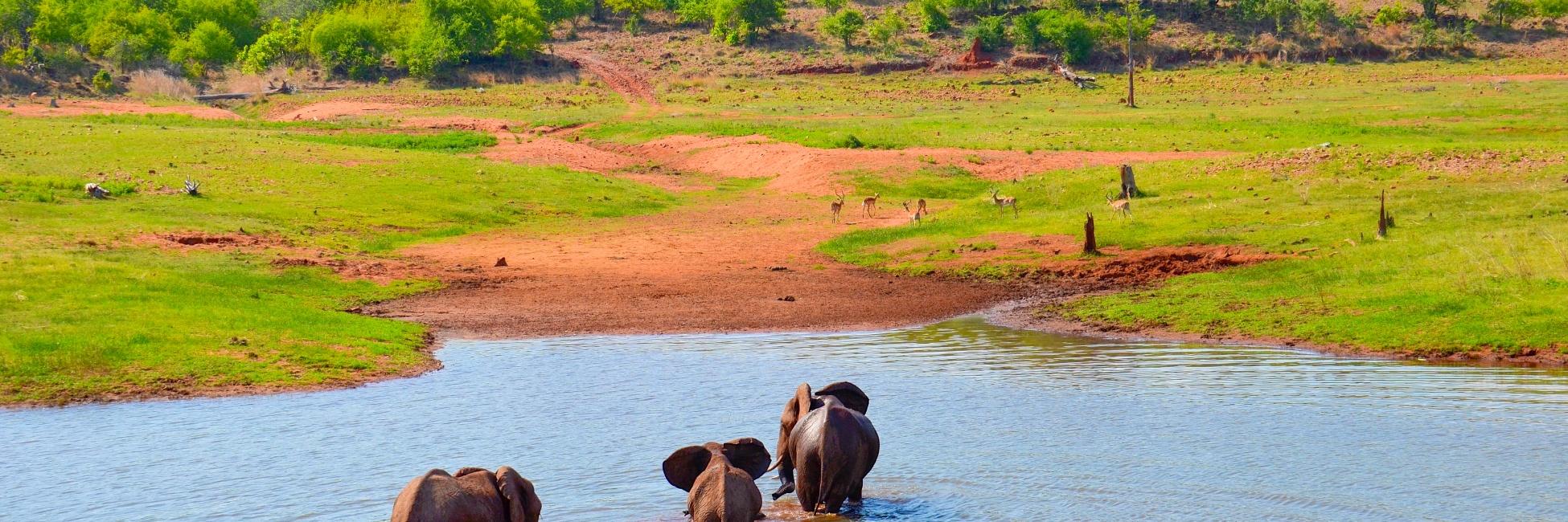 Safari au lac Kariba en Afrique