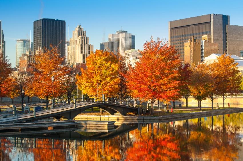 Montréal à l'automne