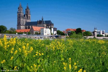 Croisière De Berlin à Prague : croisière sur l'Elbe et la Moldau (formule port/port) - 4
