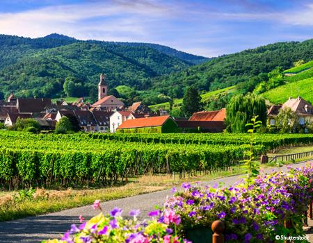 France - Alsace Lorraine Grand Est - Rhin en croisière - Croisière Gastronomie sur le Rhin avec Marc Haeberlin(1) et Serge Dubs(1)