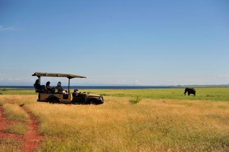 Safari au parc national matusadona